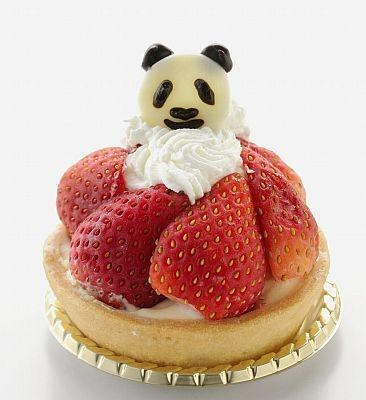 Panda strawberry tarte Tokyo ♥ Dessert