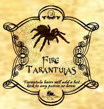 Fire Tarantula Label