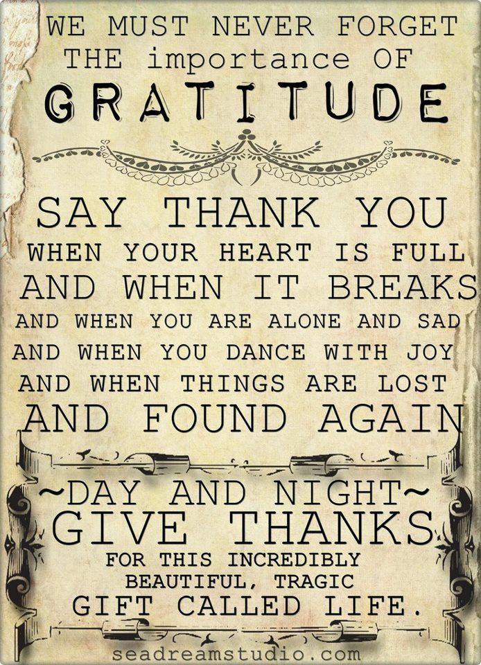 We must never forget the importance of GRATITUDE...   Share Inspire Quotes - Love Quotes   Funny Quotes   Quotes about Life   Motivational Quotes