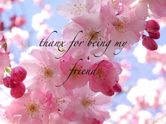 Image result for thank you dear friend pinterest