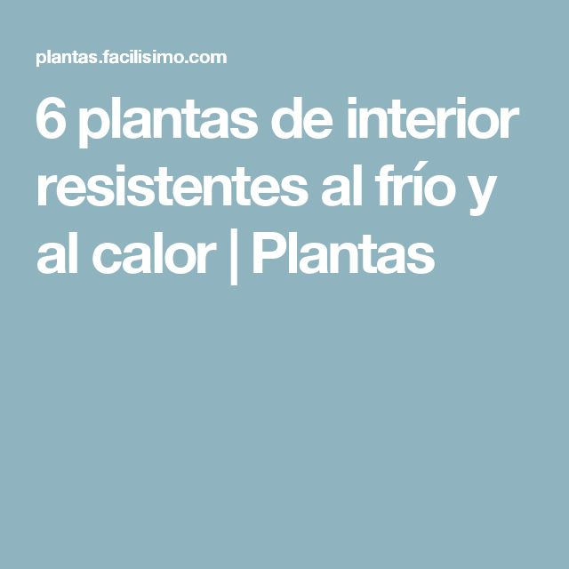 M s de 25 ideas incre bles sobre plantas de interior - Plantas de exterior resistentes al frio ...