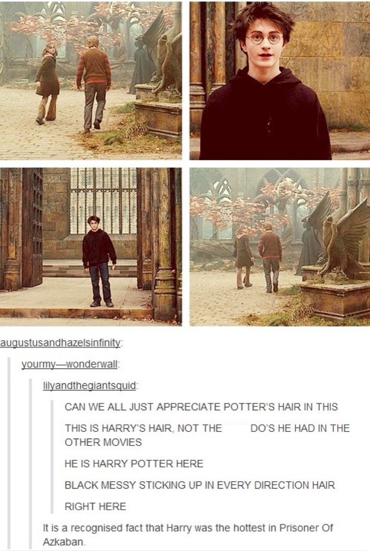 it's also funny, because yes, he is in fact the hottest in Prisoner of Azkaban, in my opinion.