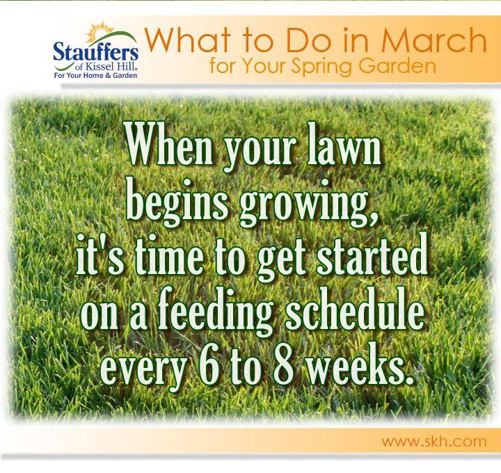 25 Best Ideas About Lawn Fertilizer Schedule On Pinterest