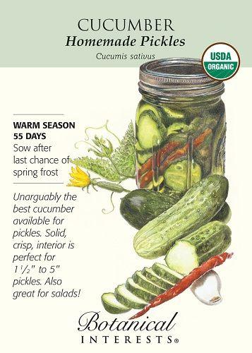 Homemade Pickles Cucumber Seeds - 1.5 grams - Organic