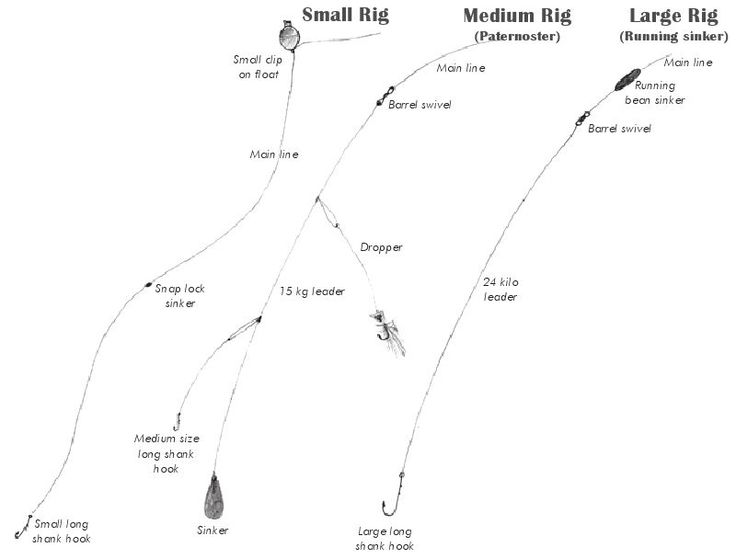 The three main rigs used for jetty fishing in tasmania for Jetty fishing rigs