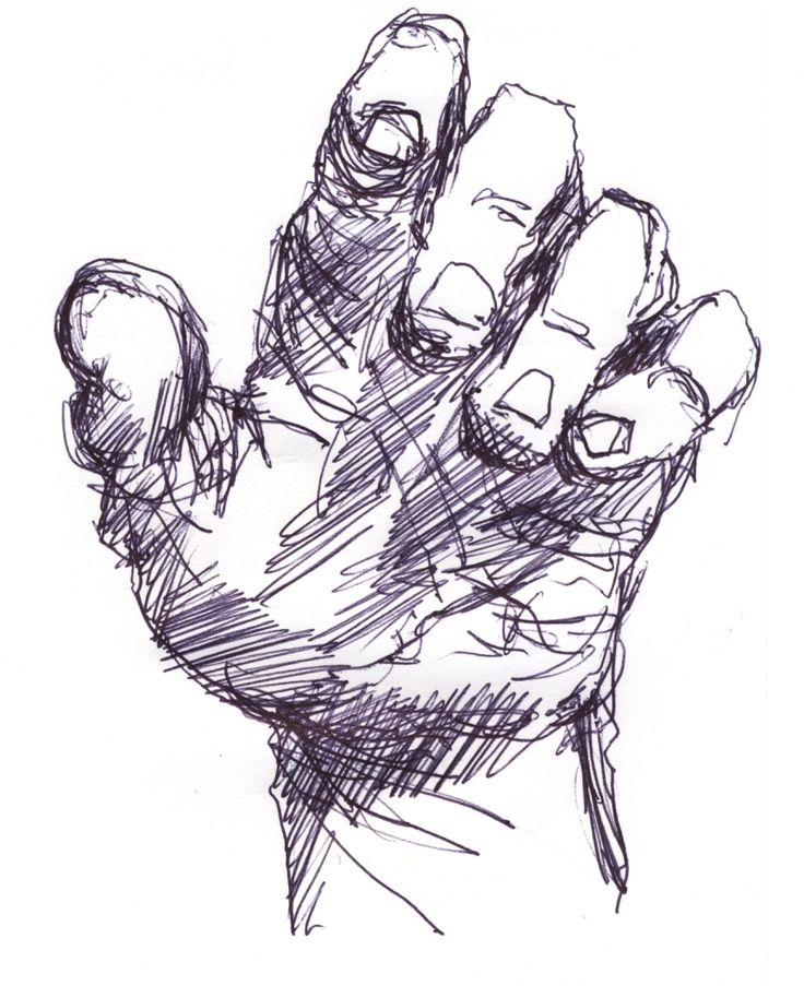 beginner pencil drawing exercise | ... pen sketch of the left hand, drawing exercise to learn foreshortening