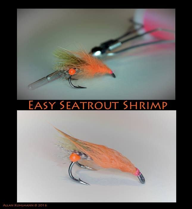39 best surf perch flies images on pinterest surf for Surf perch fishing oregon