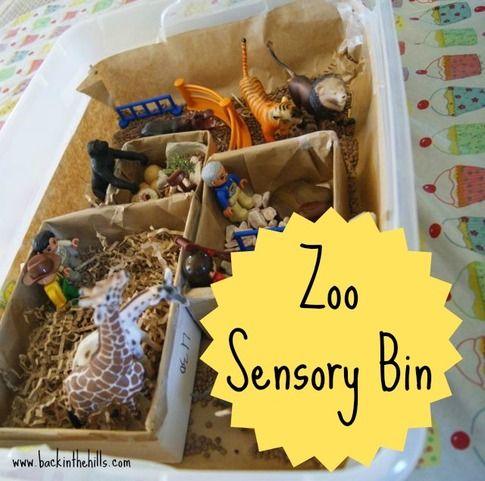 Zoo Sensory Bin: Back In The Hills
