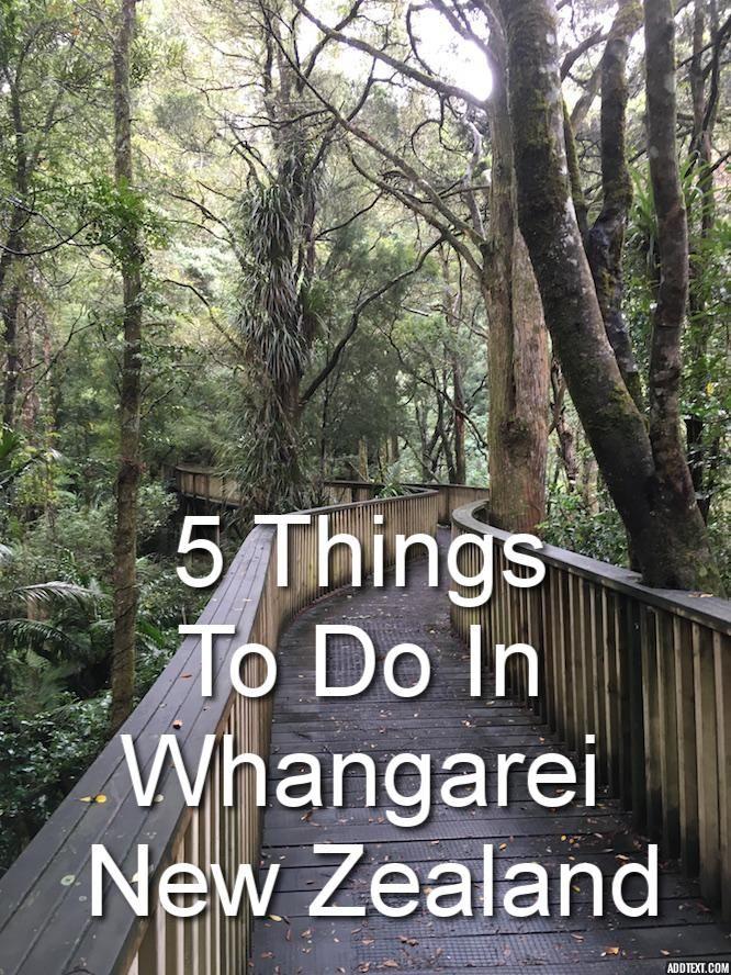 5 Things To Do in Whangarei, New Zealand #whangarei #travel #newzealand