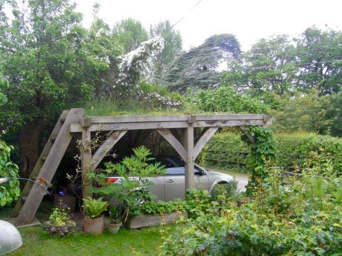 Orchids on green roofs are not as rare as you might think. This green roof Carport in Herefordshire is a case in point.