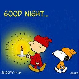 ✔ Good Night! --Peanuts Gang/Snoopy & Charlie Brown