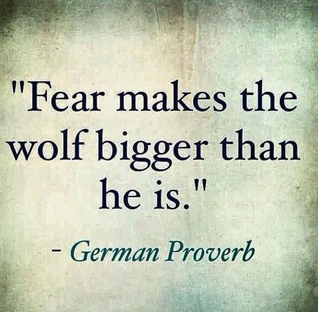 """""""Fear makes the wolf bigger than he is."""" - German Proverb  Confidence is key."""
