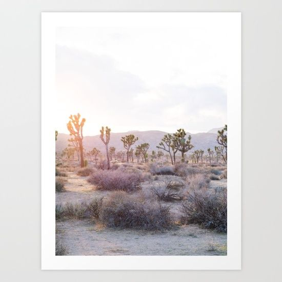 Feel the glow as the sun paints the desert sky pink in this image taken at Joshua Tree.<br/> <br/> This print is one of two in the set. This is the Left Side, see Joshua Tree Diptych [Right Side] for the adjoining print.<br/> <br/> Joshua Tree, Sunset, Nature, DSLR, Beautiful, Modern, Diptych