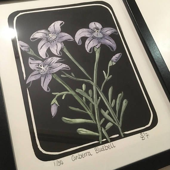 Lino Print  Australian Canberra Bluebell  Hand Pulled