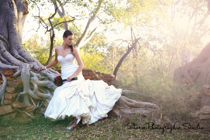 Bridal Portrait. Wedding Photography by Storm Photographic Studio, Wedding Photography Gauteng.