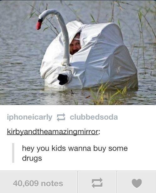 Funniest Tumblr Posts