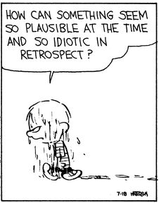 """Calvin and Hobbes QUOTE OF THE DAY (DA): """"How can something seem so plausible at the time and so idiotic in retrospect?"""" -- Calvin/Bill Watterson"""