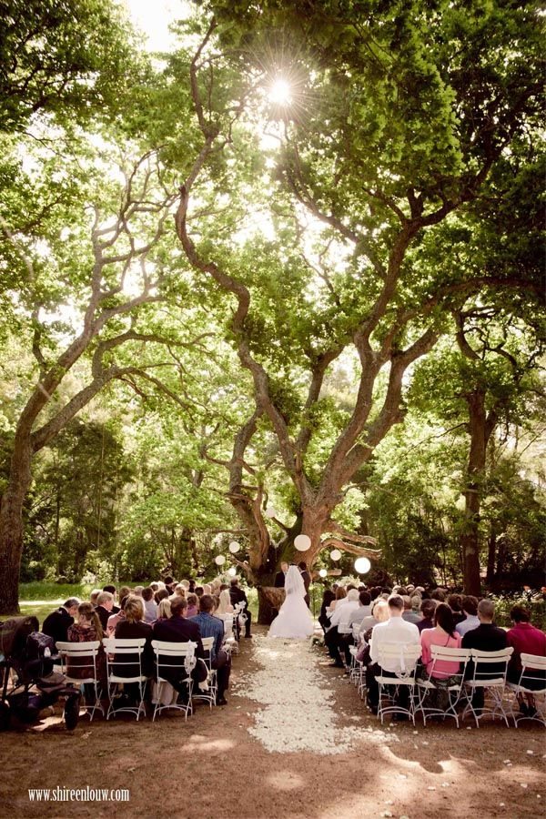 World's Most Incredible Wedding Aisles | Shireen Louw Wedding Photographer Cape Town