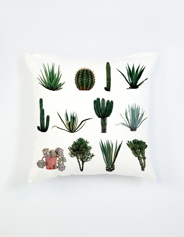Cactus Collection cushion from The Club Of Odd Volumes via The Third Row