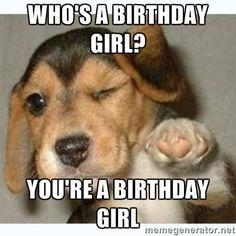 Who's a birthday girl? You're a birthday girl - fist bump puppy   Meme Generator memegenerator.ne