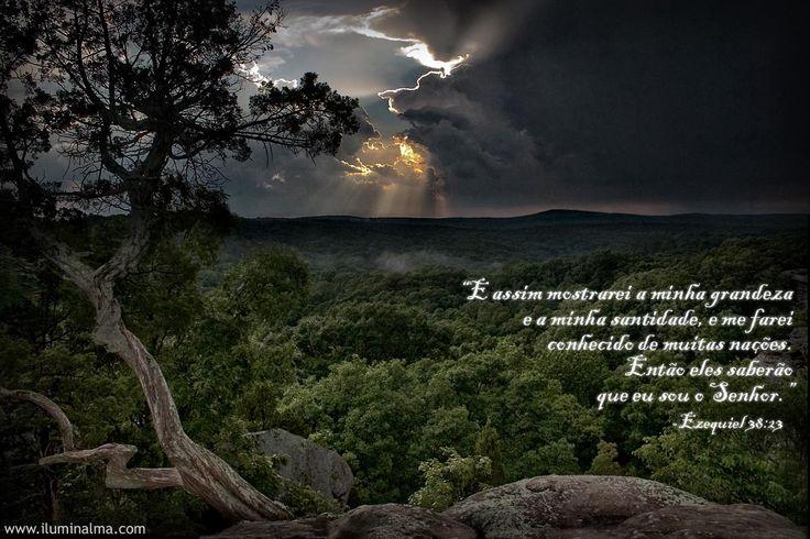 Ezequiel 38:23