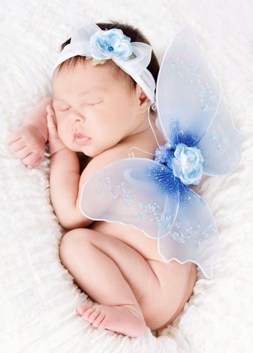 Cute Baby Fairies: 1000+ Images About Baby Fairies Sooo Cute!!!! On Pinterest