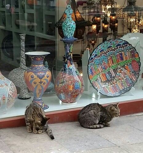Cats and hand painted Ceramics