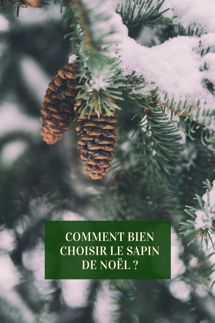 Incontournable Le Sapin De Noel Symbolise A Lui Seul Les Fetes De