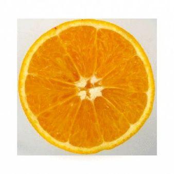 Naranja icono de la aplicación para el diseño web