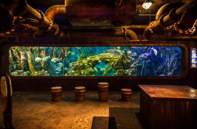 Highlight by Justin Lee. Ushaka Marine World in Durban, South Africa.
