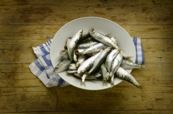 If you are an aging Baby Boomer, should you be eating more fish?There have been studies suggesting that fish oils are good for brain function and may d