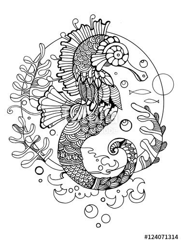 Sea horse adult coloring page  by Alexander Pokusay on Fotolia