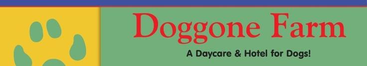 Doggone Farm - A Daycare & Hotel for Dogs!