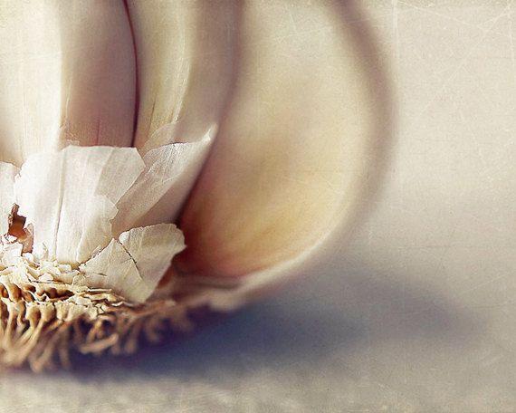 "Still life photography  - Wall art kitchen decor - Rustic kitchen - Fine art food photography print 8x10 - ""Garlic"""