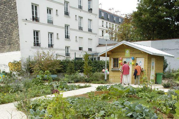 Jardin partagé du parc Hérold - Jardinons-ensemble !
