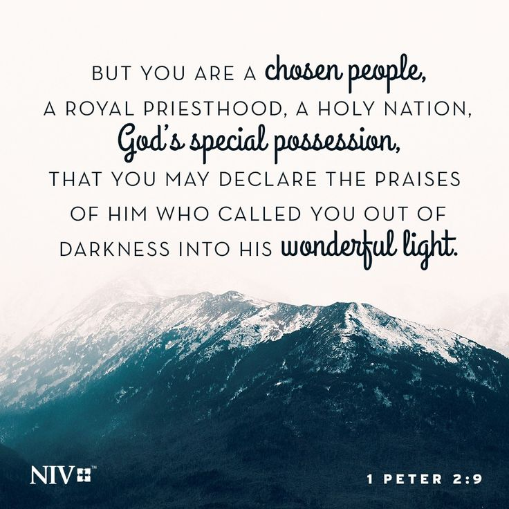 9 But you are a chosen people, a royal priesthood, a holy nation, God's special possession, that you may declare the praises of him who called you out of darkness into his wonderful light. 1 Peter 2:9
