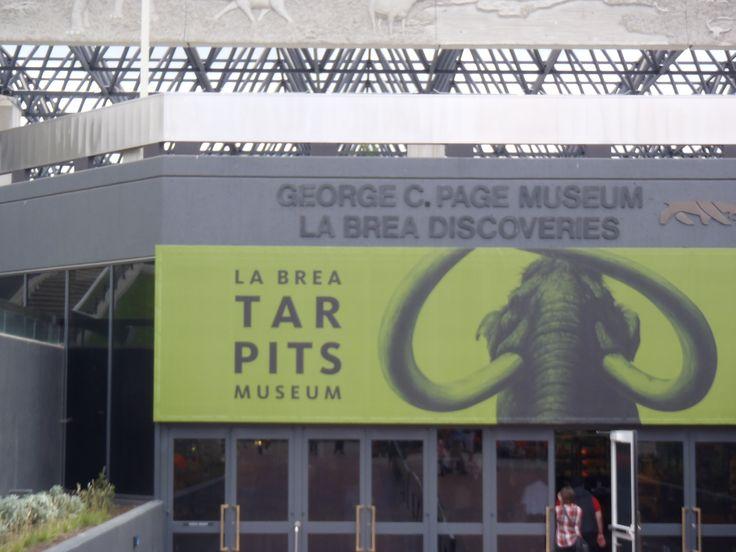 Museo con fósiles de animales de la era del hielo encontrados en excavaciones hechas ahí mismo. Padrísimo para niños y adultos.