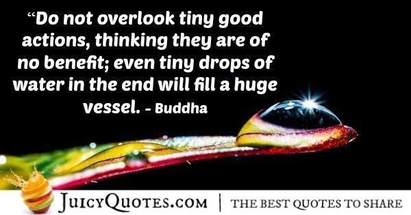 Buddha Quote - 113