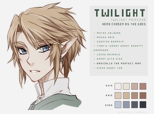 I like the way it says 'Basically the perfect man', because I laughed and went 'Yep - that is twilight in a sentence'. Twilight's my favourite, but Ocarina 3DS' release was what made me notice Zelda. It kinda went chaotic from there...