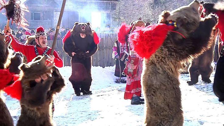 Ursul lui Gavrila din Asau, jud. Bacau