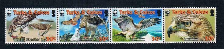 EA1337 2007 Turks islands of Caicos red tailed hawk panda emblem WWF 4 new 0504