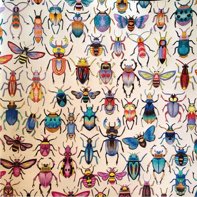 Beetles. Secret Garden. Besouros. Jardim Secreto. Johanna Basford