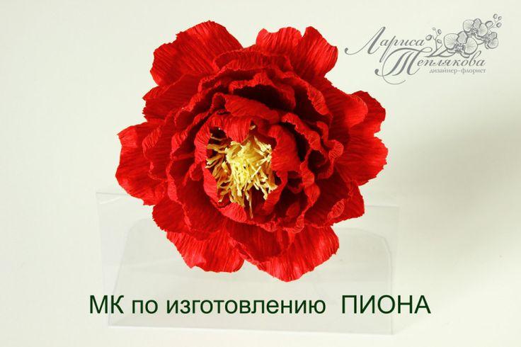 "(6) Gallery.ru / Фото #28 - МК ""ПИОН"" - LediFlor"