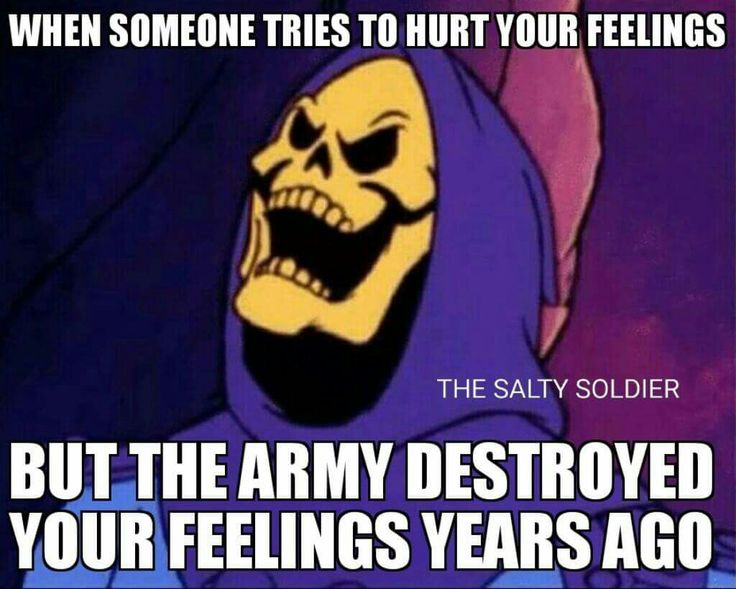 Army Destroyed Your Feelings