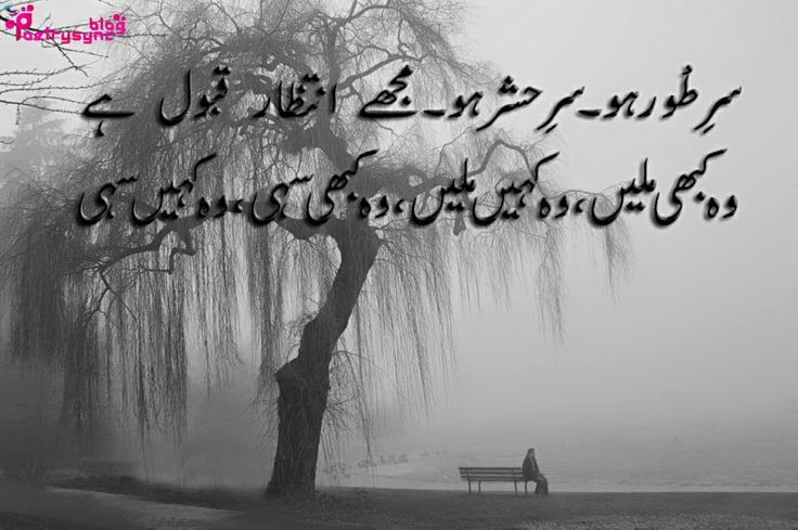 26 best aarzoo shayari images on pinterest urdu poetry for Couture meaning in urdu