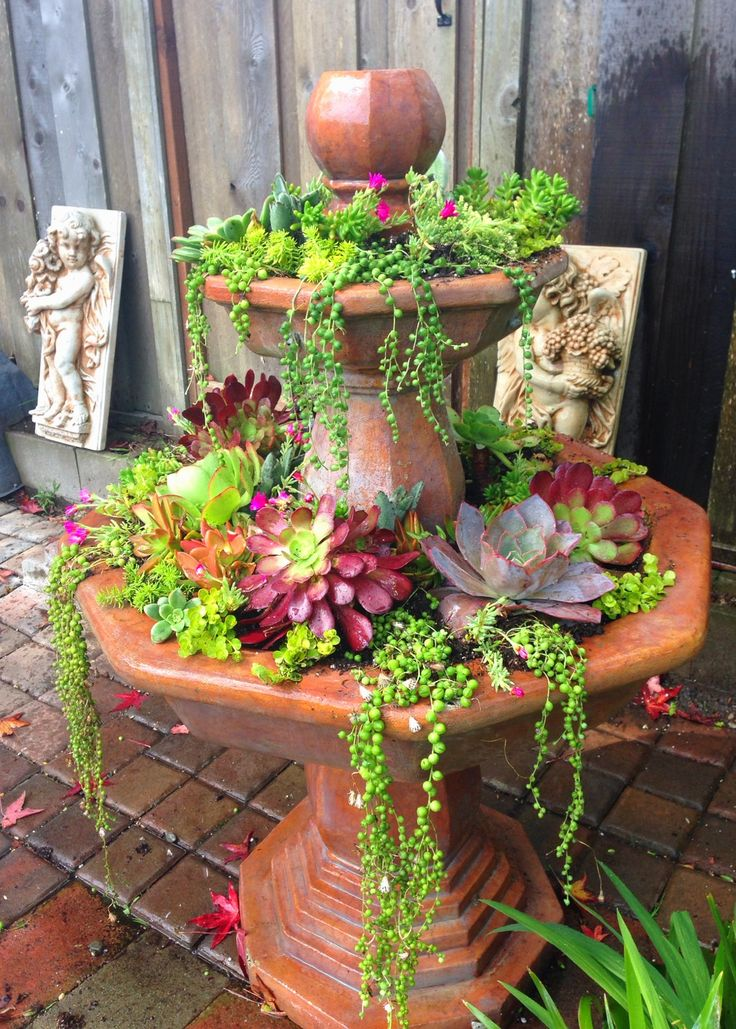 With an upcoming drought in California, I converted my water greedy fountain into a succulent garden and love the result!
