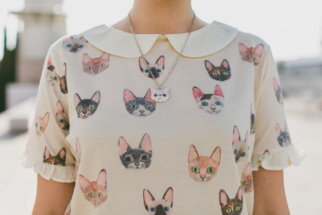 cat t-shirt - The cat, you and us