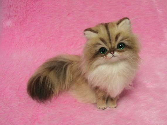 Needle Felted Golden Persian Cat: Miniature Needle Felt Kitten, Needle ... Fluffy Teacup Kittens