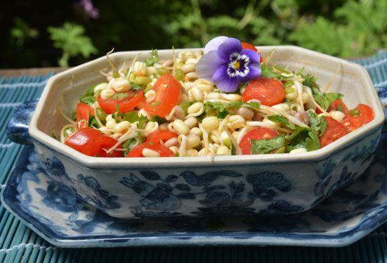 салат из ростков маша
