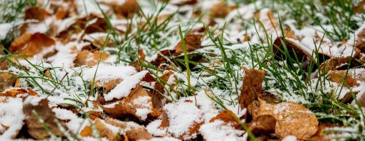 Winterize Your Lawn - Winterize Sprinkler System Springfield MO